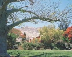 Mẫu tranh dán tường phong cảnh mã: 26