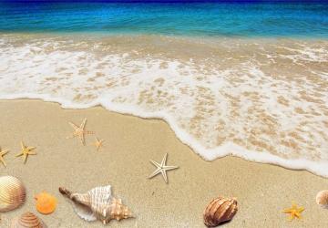 Mẫu tranh dán tường cảnh biển mã:71