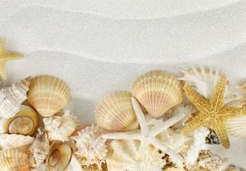 Mẫu tranh dán tường cảnh biển mã:85
