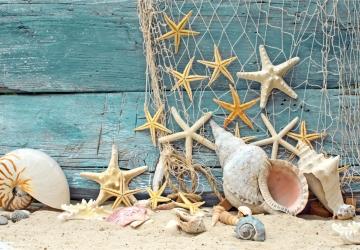 Mẫu tranh dán tường cảnh biển mã:87