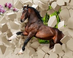 Mẫu tranh ngựa mã đáo thành công mã: 03