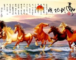 Mẫu tranh ngựa mã đáo thành công mã: 05