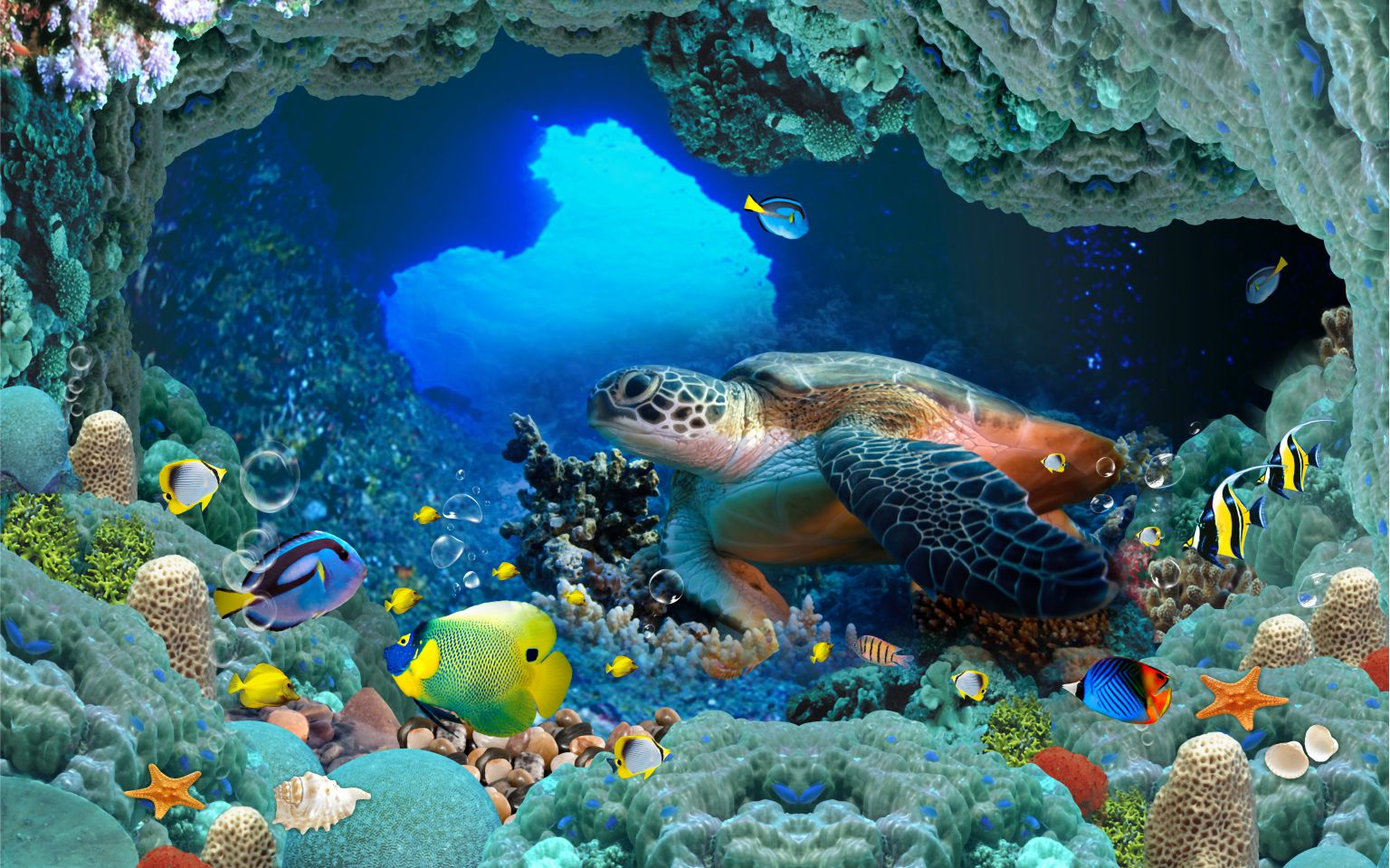 Tranh dán tường cảnh biển in 3D độc đáo